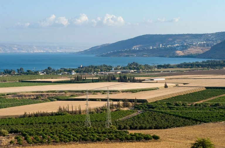 The Annual Economic Conference for Kibbutz Industry  thumb